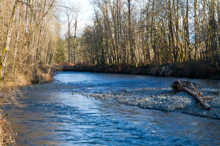 Low river flow in sunglight