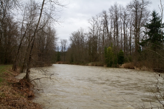 Minor flooding river