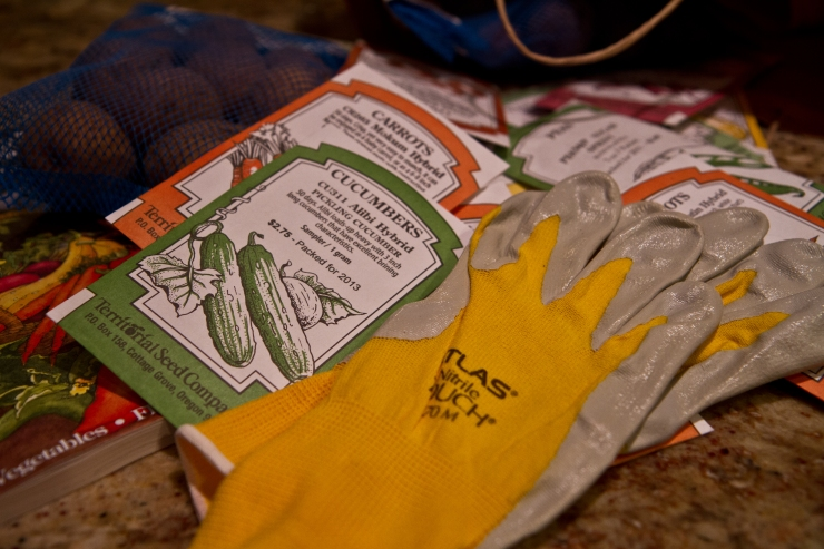 Gardening gloves with seed packets in background